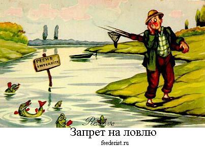 по какое число действует запрет на ловлю рыбы в беларуси